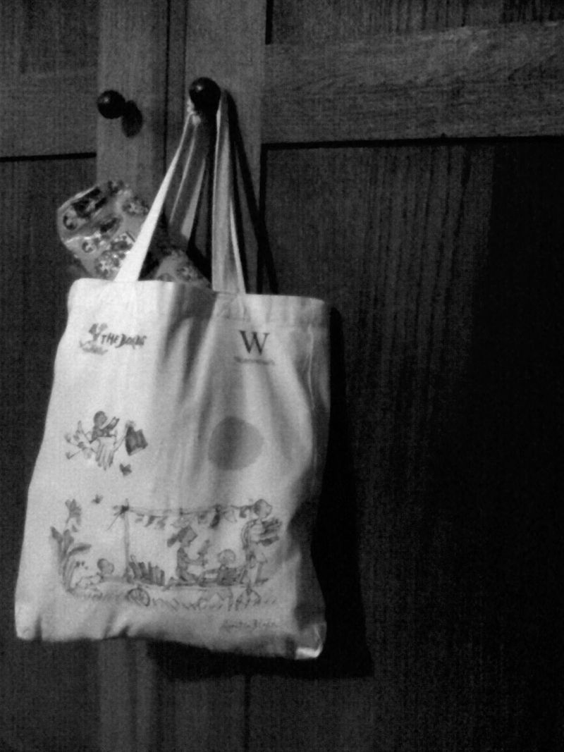 Bag on wardrobe door